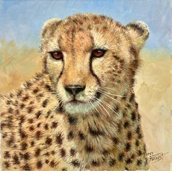 Cheetah, Maasai Mara III by Tony Forrest -  sized 10x10 inches. Available from Whitewall Galleries